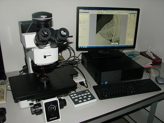 Olympus microscoop met 'Stream' software
