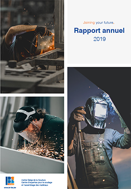 Rapport annuel IBS 2019